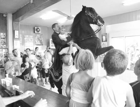 fiesta horse in room - Mahon Fiesta