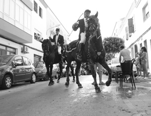 fiesta horses