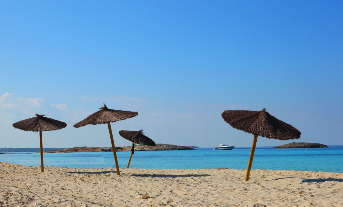 beach with parasols