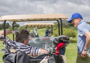 golfing buggy
