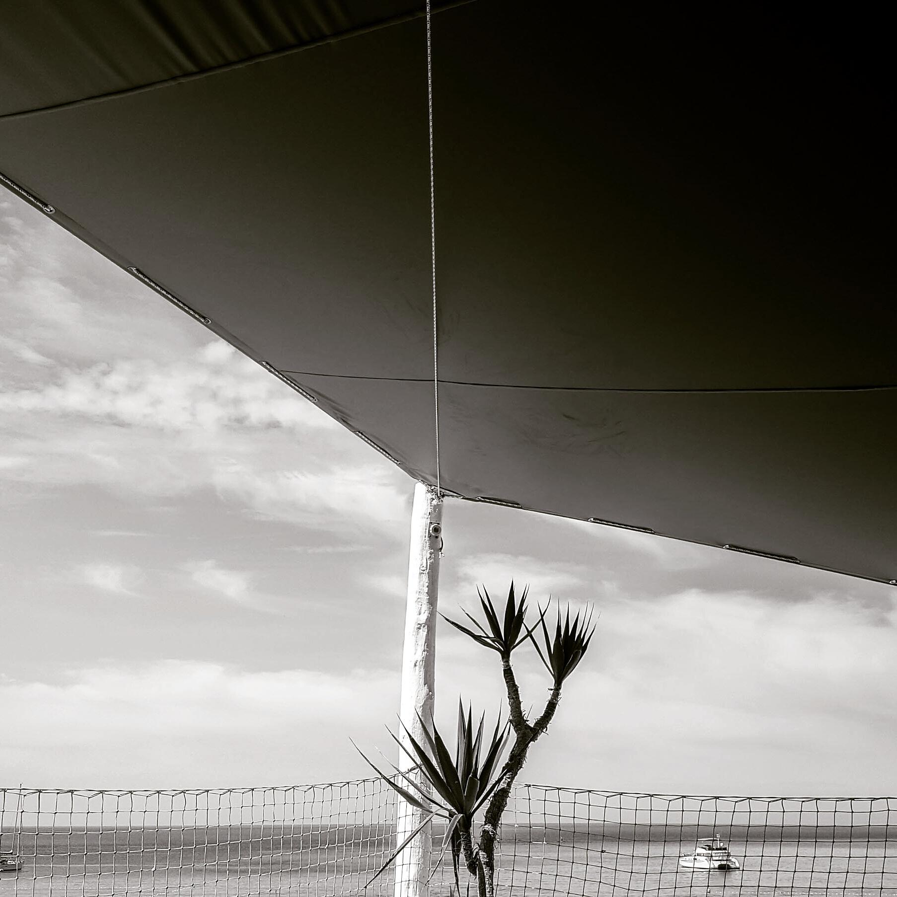 Canopy near beach