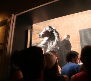 fiesta horse rears