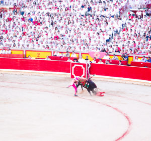 bull in bullring