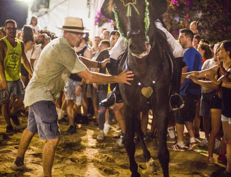 fiesta horse - Llucmacanes Fiesta